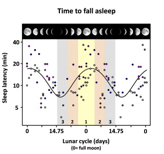 Evidence that the Lunar cycle influences human sleep.