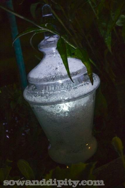 Epsom salts and solar lights