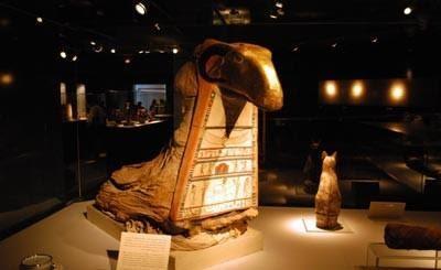 Mummification Museum.