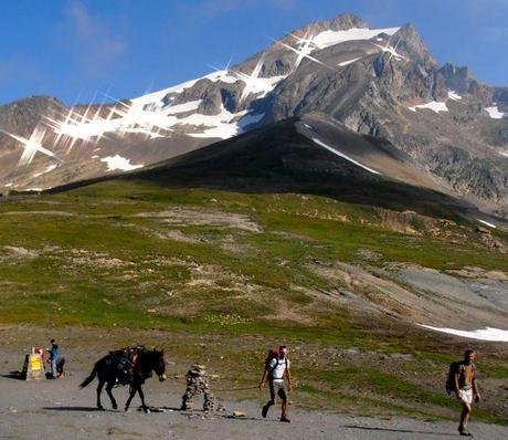 Donkey led tour of the Tour du Mont Blanc (TMB)