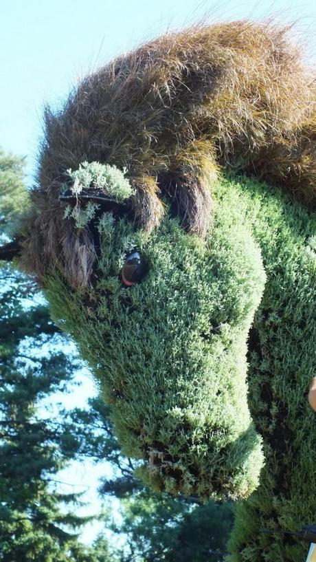 The Man Who Planted Trees (horses head) - Mosaiculture - Montreal Botancial Gardens