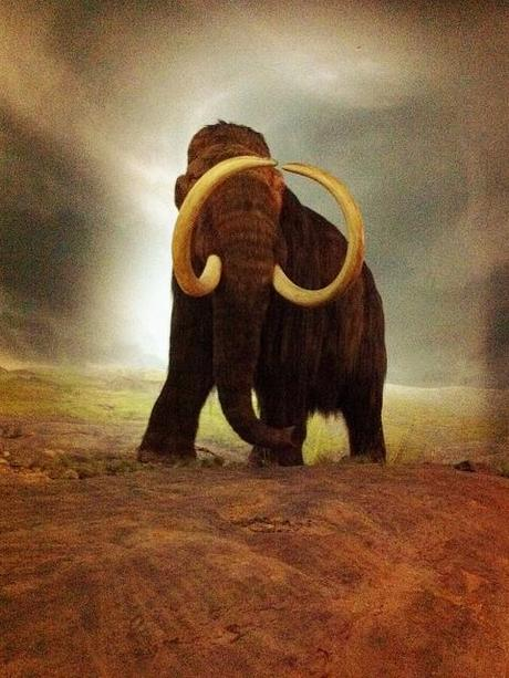 Resurrection of the Woolly Mammoth: is cloning ethical?