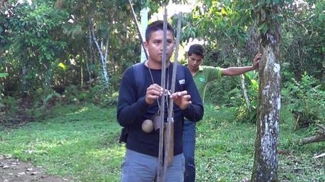 blowgun01 1024x576 How to Use a Blow Dart Gun