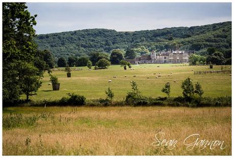 Wiston House Wedding Photographer 019