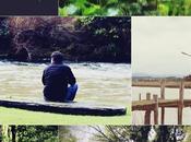 Short Trip Kauri Coat