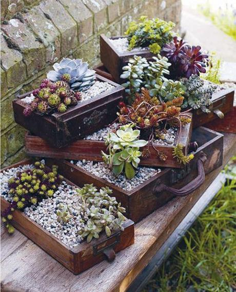 Jewel box planters