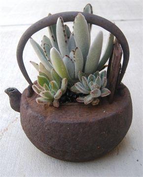 Cast Iron Tea Pot Planter