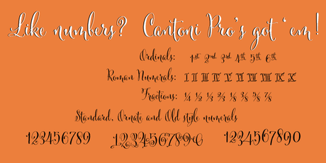 Cantoni-Numerals,Cantoni Script font, calligraphy font,script font, fancy font, hand lettered font, hand written font, fancy alphabet, fonts for invitations, best selling fonts, most popular fonts, unique fonts, fonts for weddings, wedding fonts, fonts for invitations, diy wedding fonts, diy wedding, flourishes, ornaments, wedding flourishes, wedding ornaments, wedding,