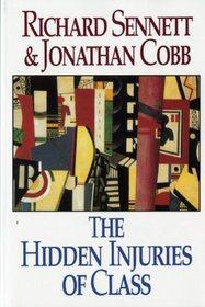 HiddenInjuries