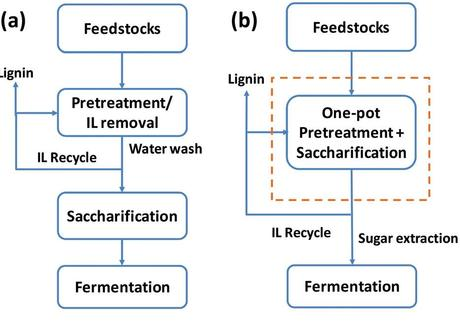Conventional separate pretreatment and saccharification of biofuel feedstock (a) entails water and waste disposal that one-pot system (b) eliminates. (Credit: Joint BioEnergy Institute)