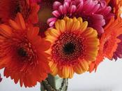 Gerbera Zinnia Bouquet