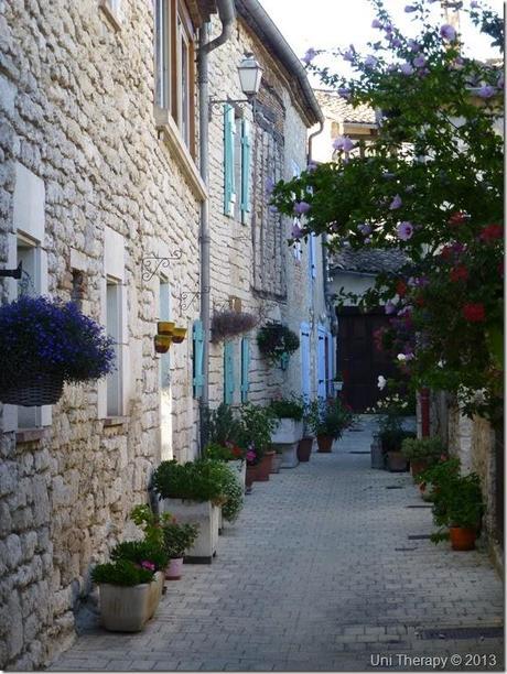 Uni Therapy: Around Montpezat-de-Quercy 3