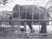 Summertime Babies from August 1947