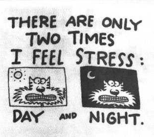 Stress-pic