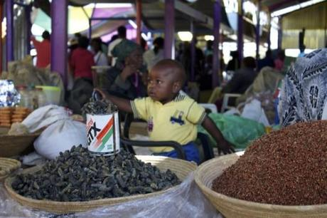 Toddler helping his mom serve up Mopane (worms) at the Single Quarter in Windhoek.