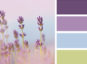 Mood Board Monday: August Design Collaboration Lavender Hues