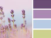 Mood Board Monday: August Design Collaboration Lavender Hues