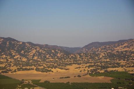 napa valley balloons 12 650x433 San Francisco: Hot Air Balloons and Napa Valley