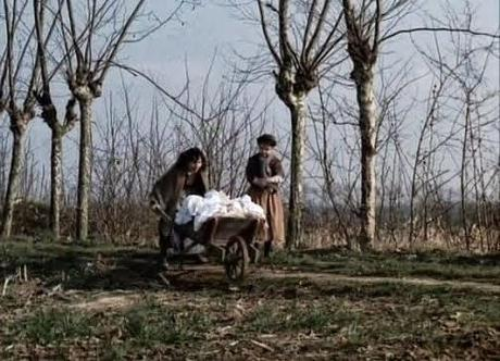 """150.  Italian filmmaker Ermanno Olmi's masterpiece """"L'Albero degli zoccoli"""" (The Tree of Wooden Clogs) (1978): An uplifting and monumental work of a cinematic genius"""