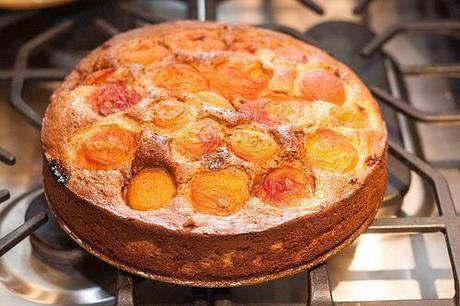 Apricot Rose Ricotta Cake (1 of 4)