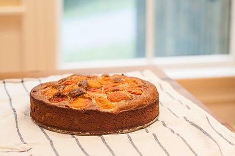 Apricot Rose Ricotta Cake (2 of 4)