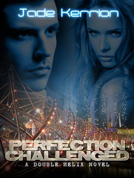 perfection-challenged-600x800