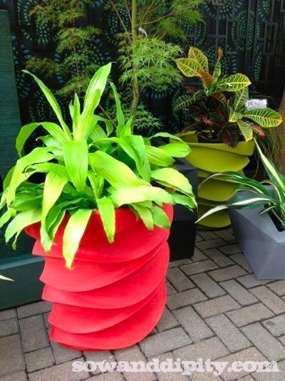 funky planter
