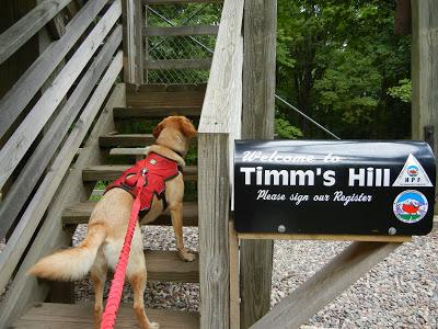 Reaching New Heights:  Timm's Hill