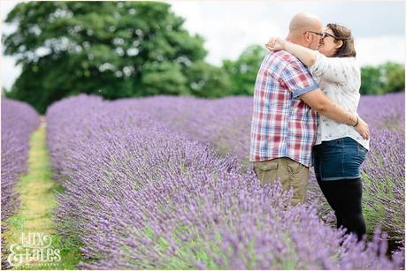 Engagement shoot photograph of a tattooed couple cuddling in mayfield lavender field