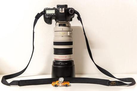 canon 6d with canon ef 100 to 400 mm lens