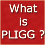 What is PLIGG CMS ?