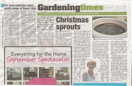 The Hinckley Times 19 September 2013