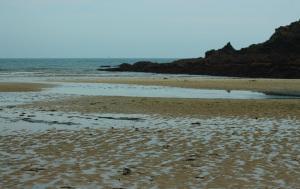 Maernporth Beach (photo: Amanda Scott)