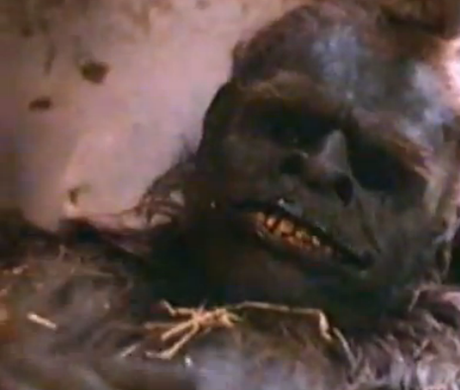 This is another of the stupid hoaxed dead Hank photos. It is from a recent Bigfoot movie.