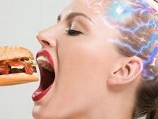 Dieting Make Less Intelligent: Study