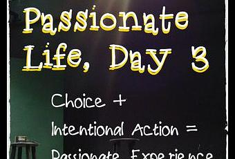 passions of life essay