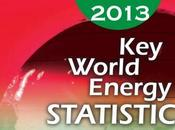 Publishes World Energy Statistics 2013
