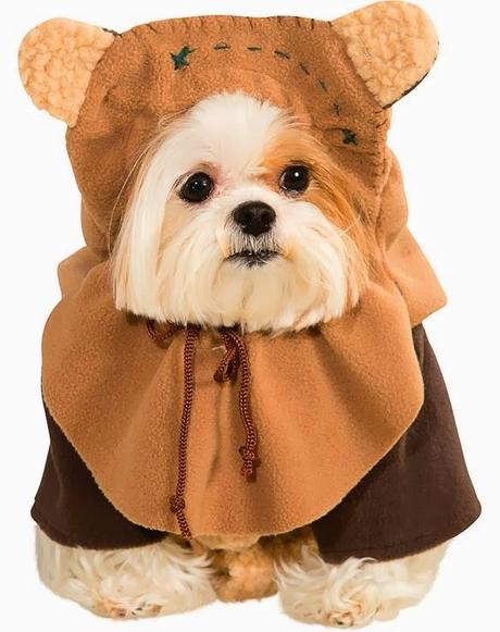 Cute Dog Halloween Costumes: The CUTEST Halloween COSTUMES For DOGS 2013!