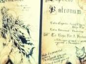 OMM: Harry Potter Spell Book!