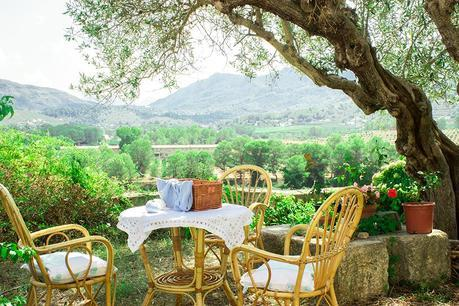 Table under the olive tree