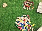 Invitation Play: Animals