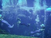 Mermaids Exist Weeki Wachee Springs State Park