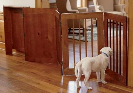 dog gate barriers