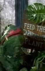 The Movies Top 10 Most Scariest Plants