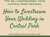 Livestream Your Wedding Central Park