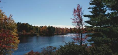 Hiking in Frontenac Provincial Park4 min read