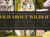 Wild About Wildlife Month: Thank Supporting Rescue