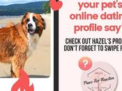 SUBMIT YOUR PET'S PHOTO: We'll Create Your Pet's Online Dating Profile Find Perfect Match!