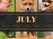 July Wild About Wildlife Month: Featuring Rideau Valley Sanctuary #WildWednesday