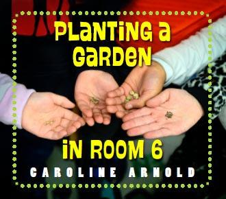 PLANTING A GARDEN IN ROOM 6--A Junior Library Guild Gold Standard Selection